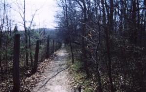 S_path